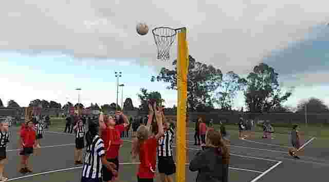 Minogue Park Netball Courts